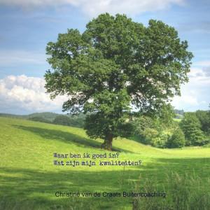kwaliteitenboom